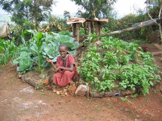african community garden